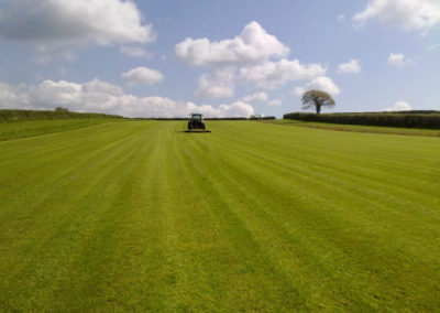 Grass cutting at Tavy Turf Farm