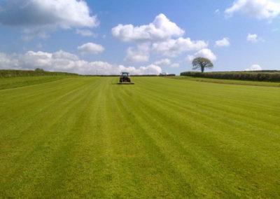Finished small lawn in Tavistock