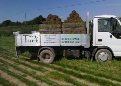 Tavy Turf Delivery