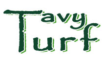 Tavy Turf